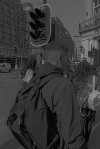 WEBAMSTERDAMLBGSCANSRHKAIQ 04 CROP 01| master 2020 | NR 37 ZONDAG 06 OKTOBER 2019| NEWGRHOUNDLABKORSMITARCHIVES